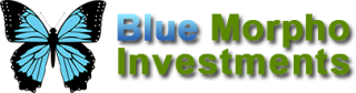 blue-morpho-investments-zrt.png