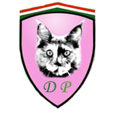 dantes-paradise-maine-coon-tenyeszet.png