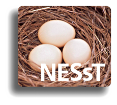 nesst-europe-nonprofit-kft.png